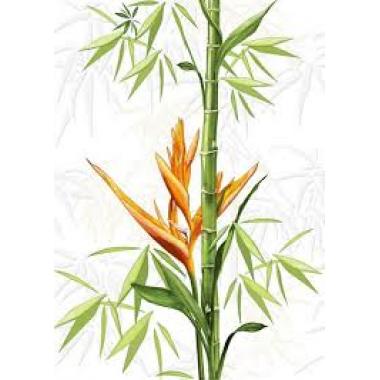 Вставка: Jungle, 25x35,  толщ. 7,5 мм, Сорт1,белая, (C-JU2M051)
