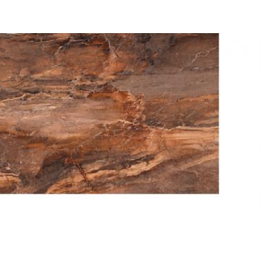Облицовочная плитка: Trevi 30x45 С1 коричневая  8,5, (TYN111D)