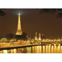 Фотообои Париж 254*184см KOMAR Nuit d'Or