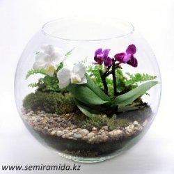 Грунт Орхидея №1 (с мхом), 1л, цв./п