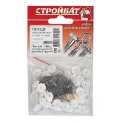 Гвозди декоративные с пластмассовой головкой (80 шт) белые