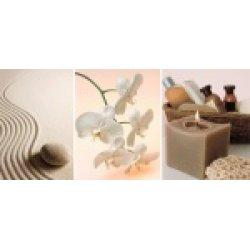 Керамическая вставка: Escada, SPA, 20x44, Сорт1, многоцветная (ES2G451D)