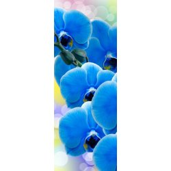 "Фотообои DIVINO DECOR А2-007 ""Орхидея синяя"" 1,0 х 2,7 м"